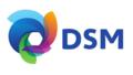 DSM logo V1