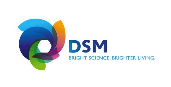 FTL transport klantlogo DSM
